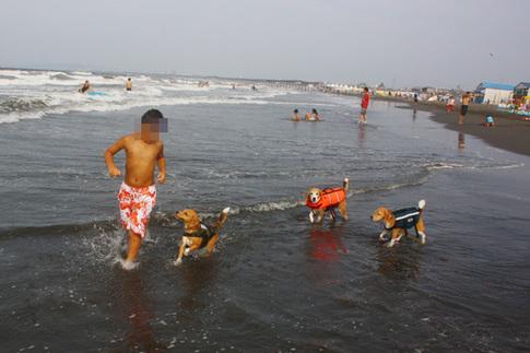 0815海水浴19.jpg