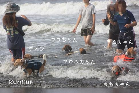 0815海水浴4.jpg