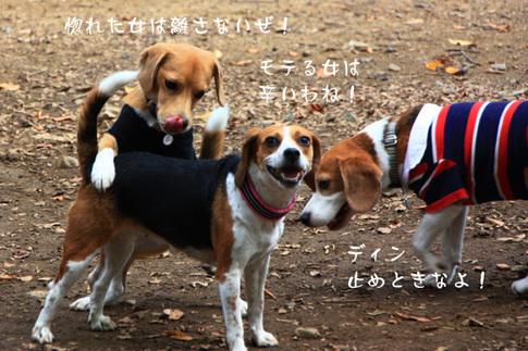 1003代々木公園6.jpg