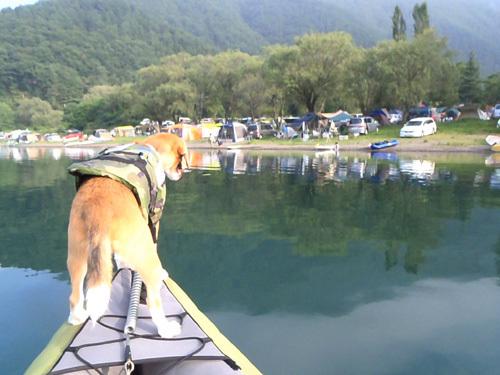 20110812お盆西湖キャンプ36.jpg