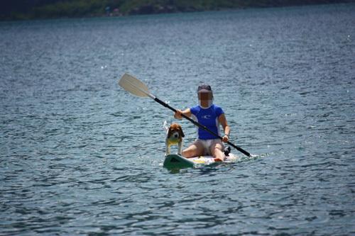 20110812お盆西湖キャンプ68.jpg