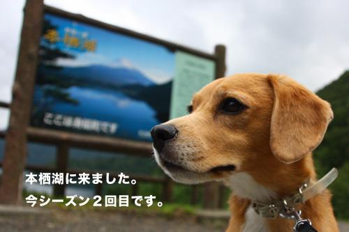 20110827本栖湖キャンプ1.jpg