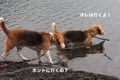 20110827本栖湖キャンプ46.jpg