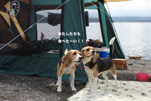 20110827本栖湖キャンプ55.jpg