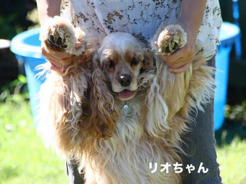 20110918朝霧オフ会24.jpg