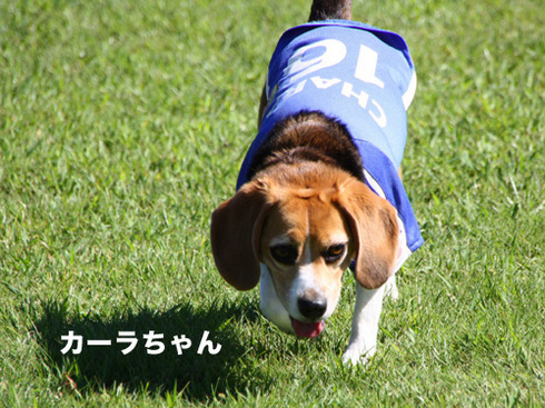 20110918朝霧オフ会31.jpg