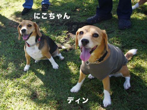 20110918朝霧オフ会45.jpg