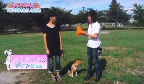 20111001うちのわんこ8.jpg