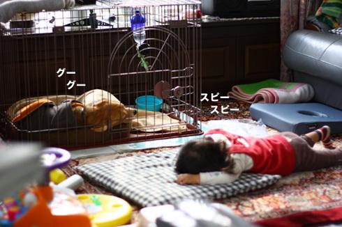 20120102パパ実家6.jpg