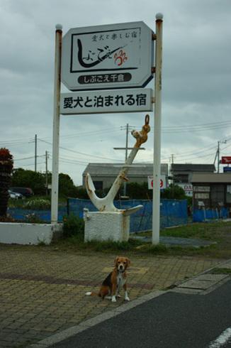 20120421誕生日旅行50.jpg
