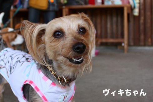 20120610ディニーズ10.jpg