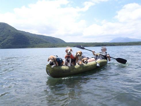 20120804西湖9.jpg